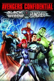 Avengers Confidential: Black Widow & Punisher