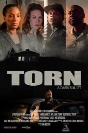 Torn: Dark Bullets