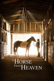A Horse from Heaven